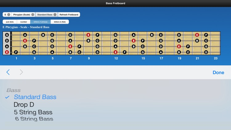 Bass Chords and Scales screenshot-4