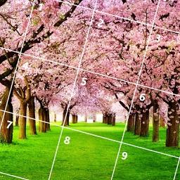 Plant Jigsaw Puzzle