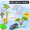 Learn english animal