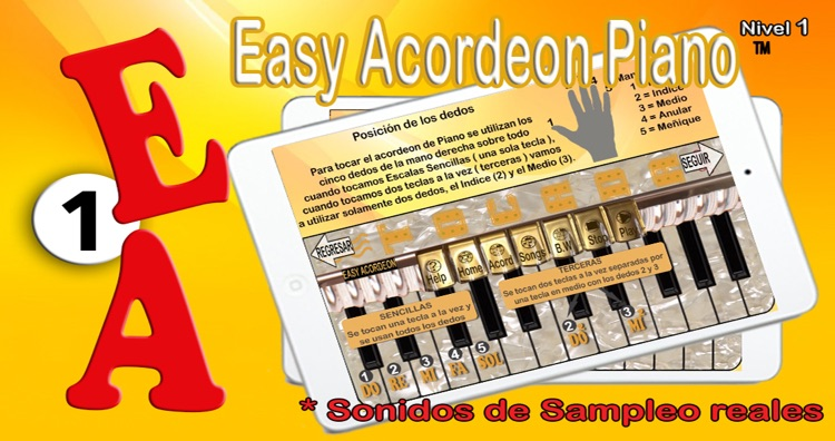 Easy Acordeon Piano 1 screenshot-4