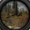 Wildlife Hunting - Lock and Load