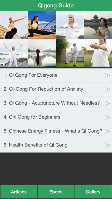 Qigong Guide - Everything You Need To Know About Qi Gong ! screenshot one