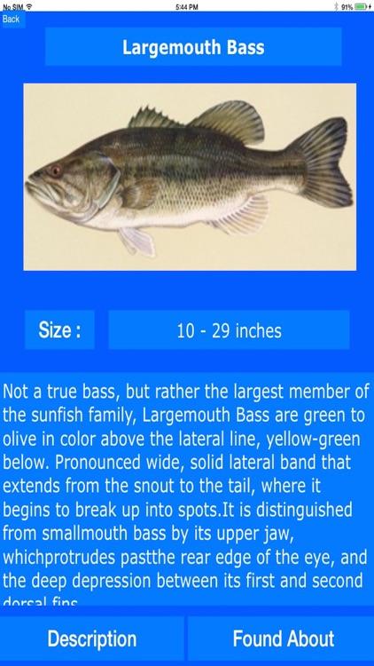 Fishing Spots around USA screenshot-4