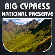 Big Cypress National Preserve Travel Guide