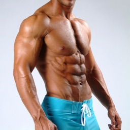 Muscle Building Guide - How To Build Muscle