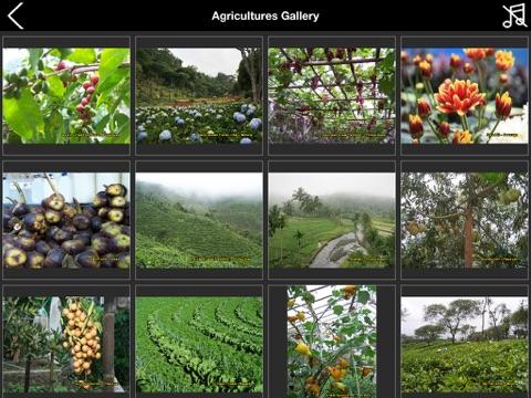 Travel to East Java Indonesia iPad