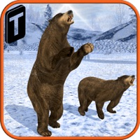 Codes for Bear Revenge 3D Hack