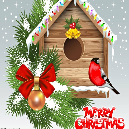 Christmas Cards. Send Christmas greetings ecards and custom Merry Christmas card!