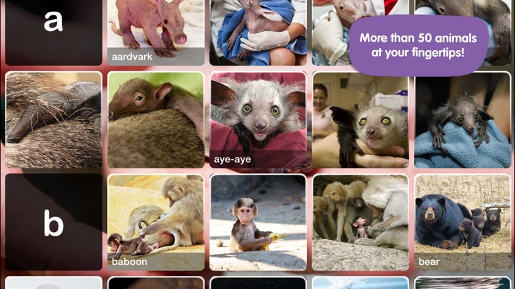 ABC ZooBorns screenshot-1