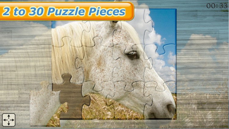 Mighty Horses - Real Horse Picture Puzzle Games for kids screenshot-3