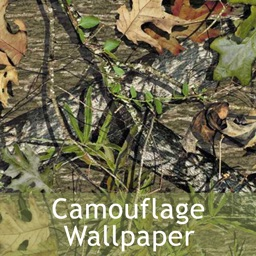 Camouflage Wallpaper 2015