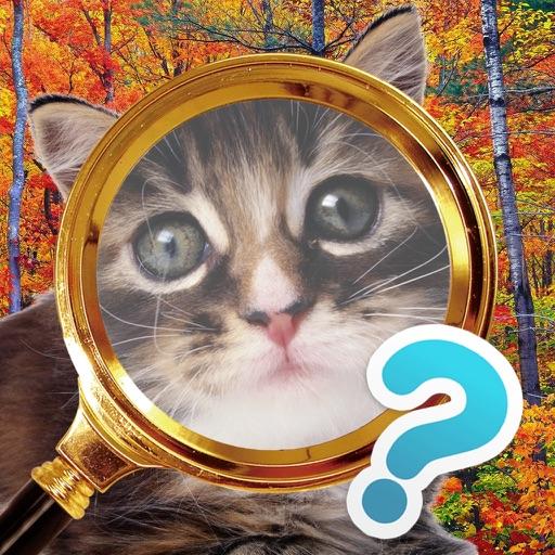 Найди кота - поиск котов на картинке