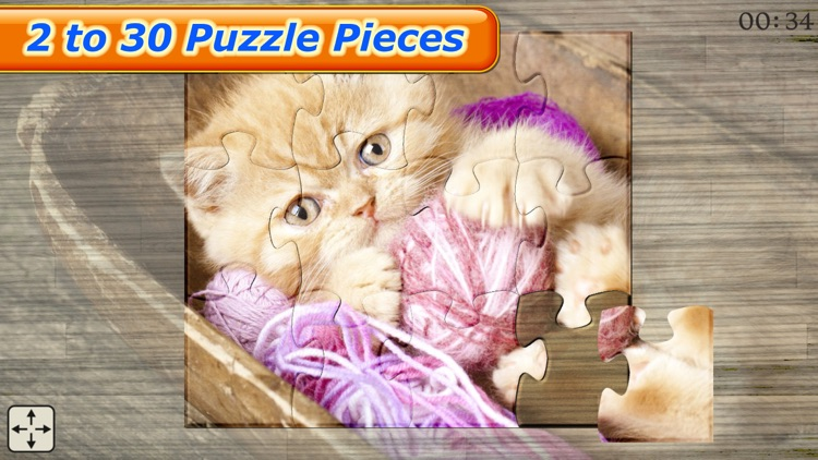 Cute Cats - Real Cat and Kitten Picture Jigsaw Puzzles Games for Kids screenshot-3