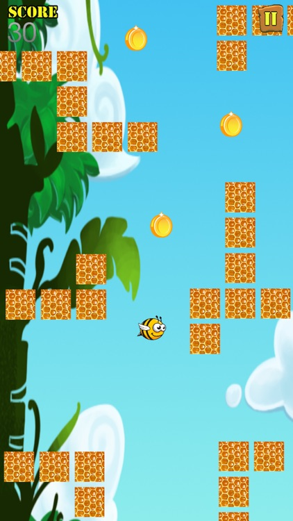 A Bumble Bash Honey Bee Adventure