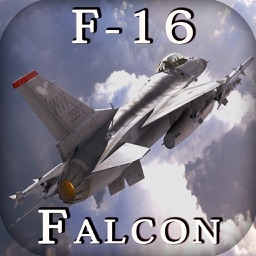 F-16 Fighting Falcon - Combat Flight Simulator of Infinite Fighter Hunter