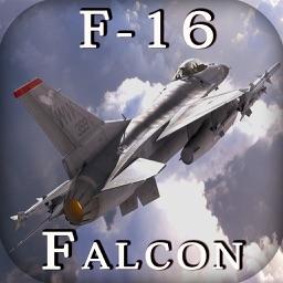 F-16 Fighting Falcon - Combat Flight Simulator of Infinite Fighter Hunter