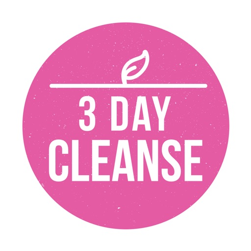 3 Day Cleanse - High Raw Food Meal Plan icon