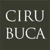 Dental Surgery and Implantology - Cirubuca Books of Dentistry