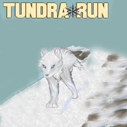 Tundra Run Dash