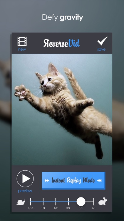 Reverse Vid - Video Rewind Editor for Backwards & Instant Replay Movies For Vine and Instagram screenshot-3
