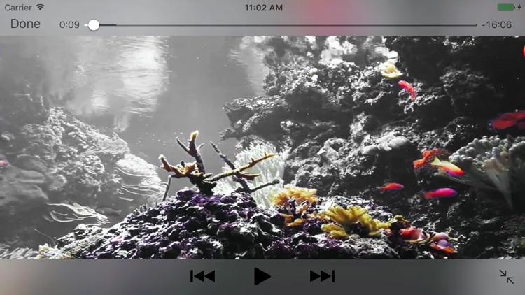 Reef Aquarium 2D/3D free