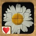 Jigsaw Solitaire Bouquet