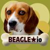 Mitee Games - Beagle io (opoly) artwork