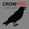 Joel Bowers - Crow Calls for Hunting アートワーク