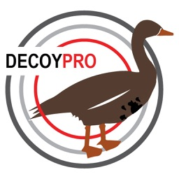 Greylag Goose Hunting Decoy Spreads - DecoyPro