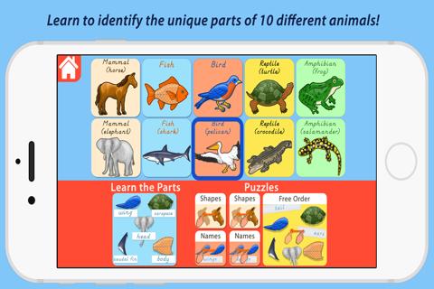 Parts Of Animals Vertebrates - Montessori Zoology - náhled