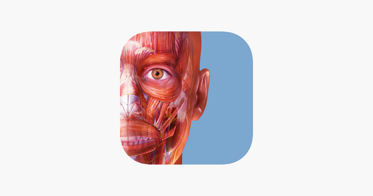Muscle Premium im App Store
