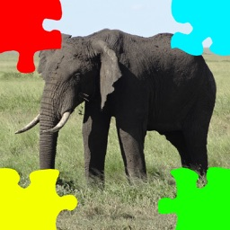 Elephants Jigsaw Puzzles with Photo Puzzle Maker