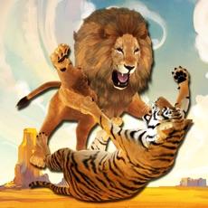 Activities of Lion Vs Tiger