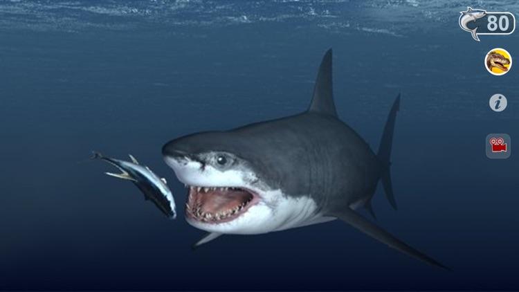 Talking Great White : My Pet Shark