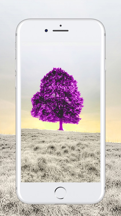 HD Wallpapers & Backgrounds Themes For Lock Screen
