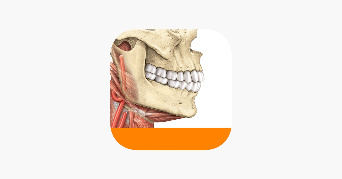 Sobotta Anatomy Atlas Free on the App Store