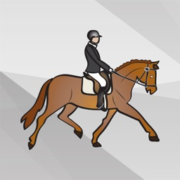 Equestrian English Horse Riding Stickers