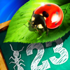 Bugs and Numbers