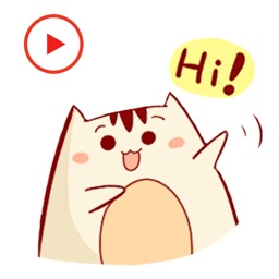 Cat Animated Happy