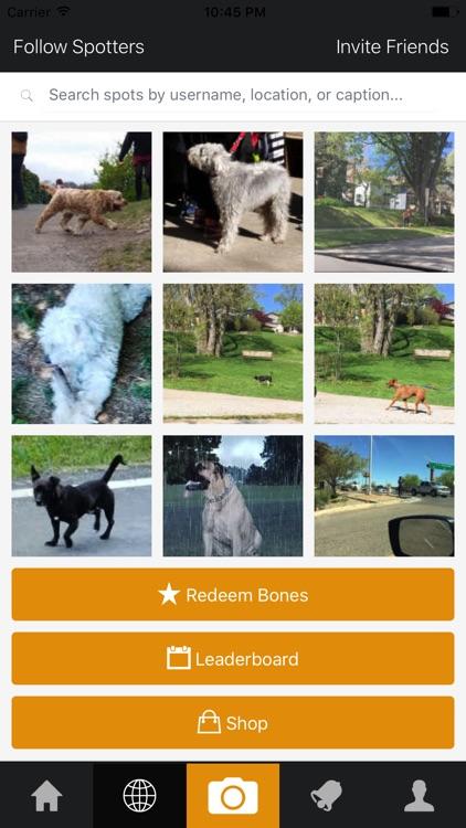 Dogspotting Mobile