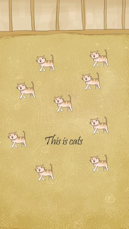 Cat Evolution Party