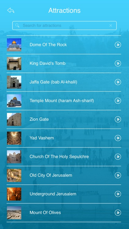 Western Wall screenshot-2