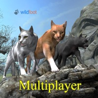 Codes for Cat Multiplayer Hack