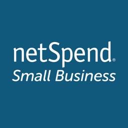 NetSpend Small Business