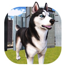 Activities of Pet Dog Simulator: Puppy Adventure in Real world