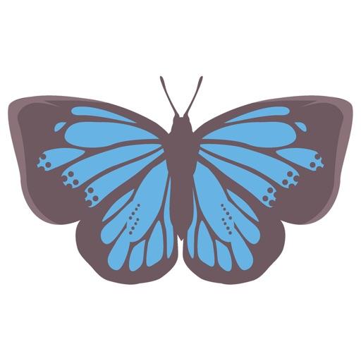 Pop und schicke Schmetterlingsaufkleber