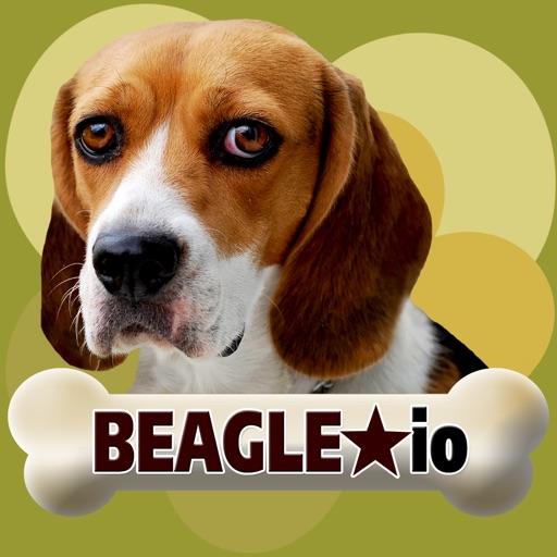 Beagle io (opoly)