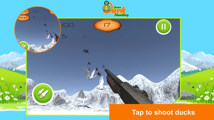 Duck Hunting 3D!