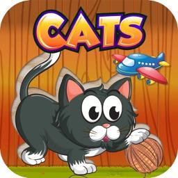 Funny kitten Puzzle for Girl - Pre K Education