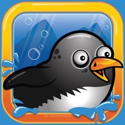 Splashy Penguin